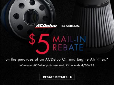 ACDelco Oil and Engine Air Filter 300 x 250